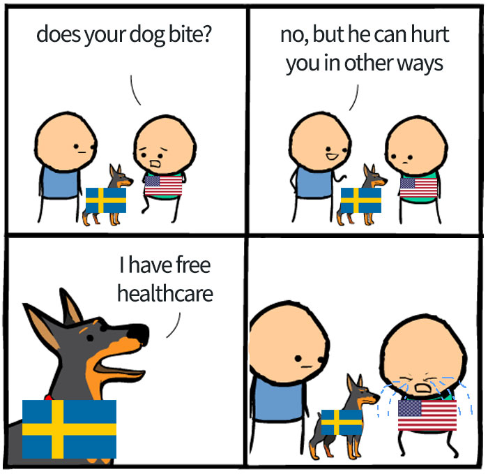 Insert Almost Every Flag On Earth Instead Sweden