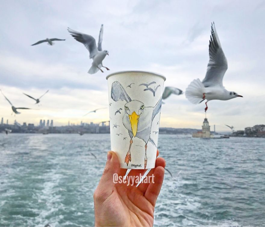 Seagulls From The Bosphorus