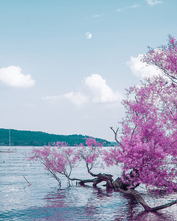 I Take Pictures Inspired By Makoto Shinkai