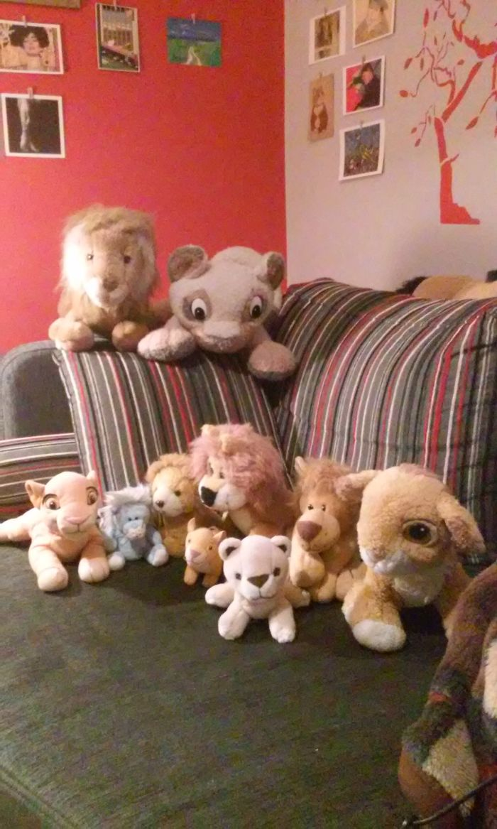 I Collect Stuffed Lions! It's Not Of My Full Collection :) Most Of Them Are From My Childhood And All Of Them Have Names And Even Personalities :)