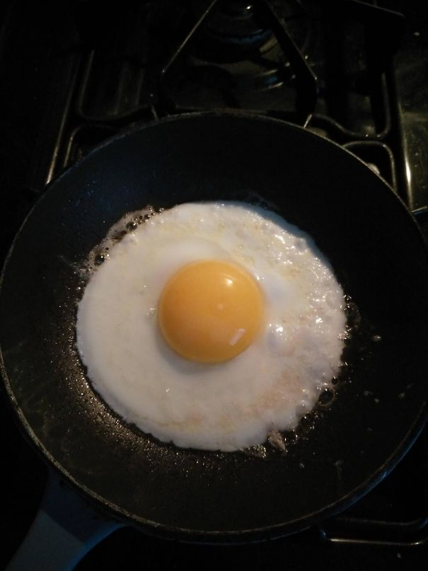 This Egg