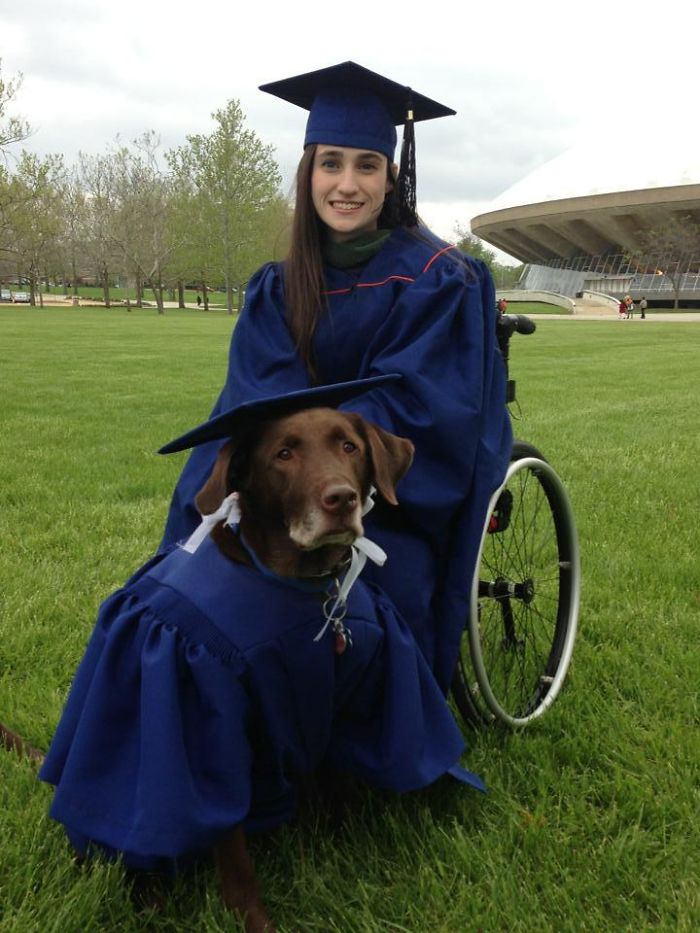 University Of Illinois Awarded An Honorary Master's Degree To Hero, A Service Dog Who Attended Each One Of His Owner's Classes