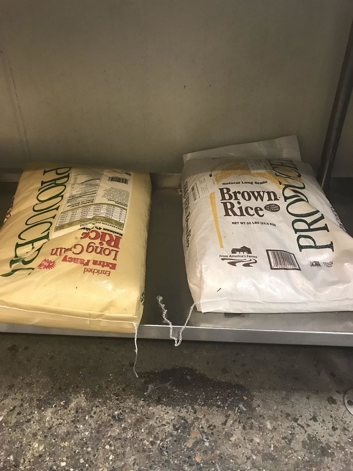 I️ Work At Chipotle, The Brown Rice Comes In A White Bag, And The White Rice Comes In A Brown Bag
