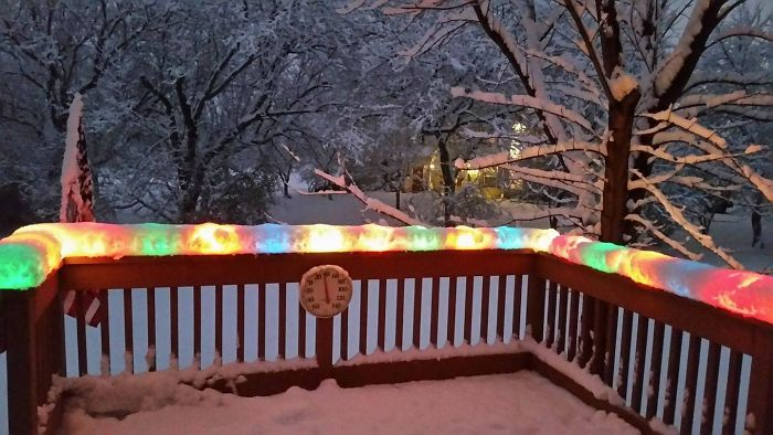 Christmas Lights Encased In Snow After Today's Snowstorm In Chicago