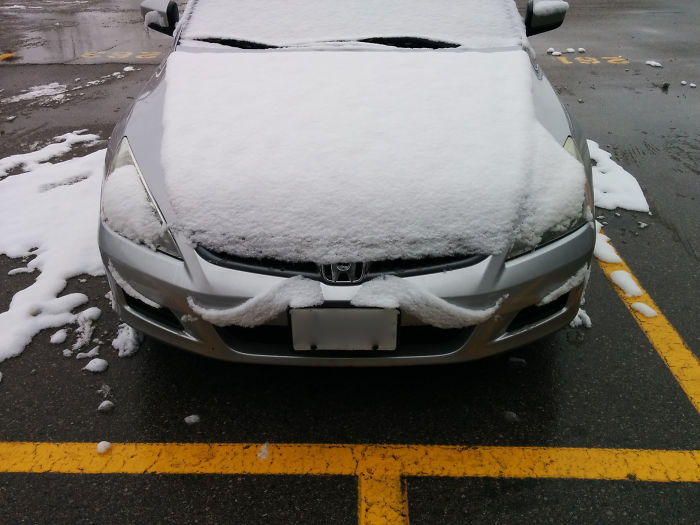 Snow Melted To Form A Moustache On My Car This Morning