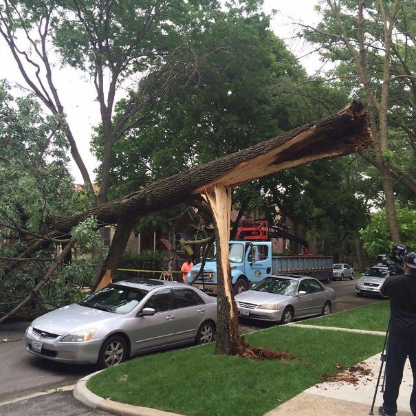 Storms Came Through Chicago. This Car Was Having A Lucky Day