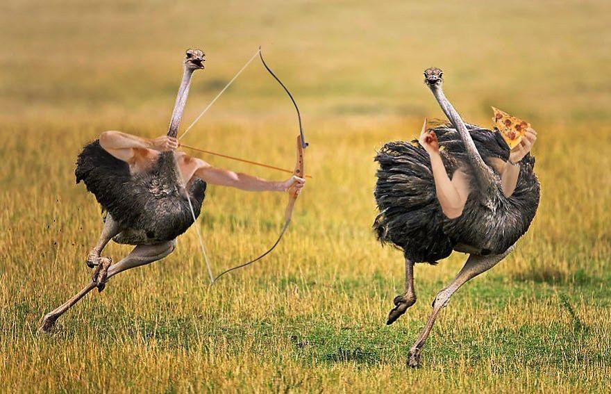 7N2GQp sRjTaIl Ee3MmmBNmWdwmKi quuKqOkPDVE4 5a6125c825116  880 - Kreativitas Netizen Memang Tak Ada Habisnya, Kali Ini Muncul Burung Bertangan Manusia