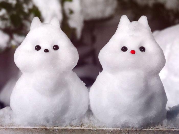 Heavy Snow Tokyo