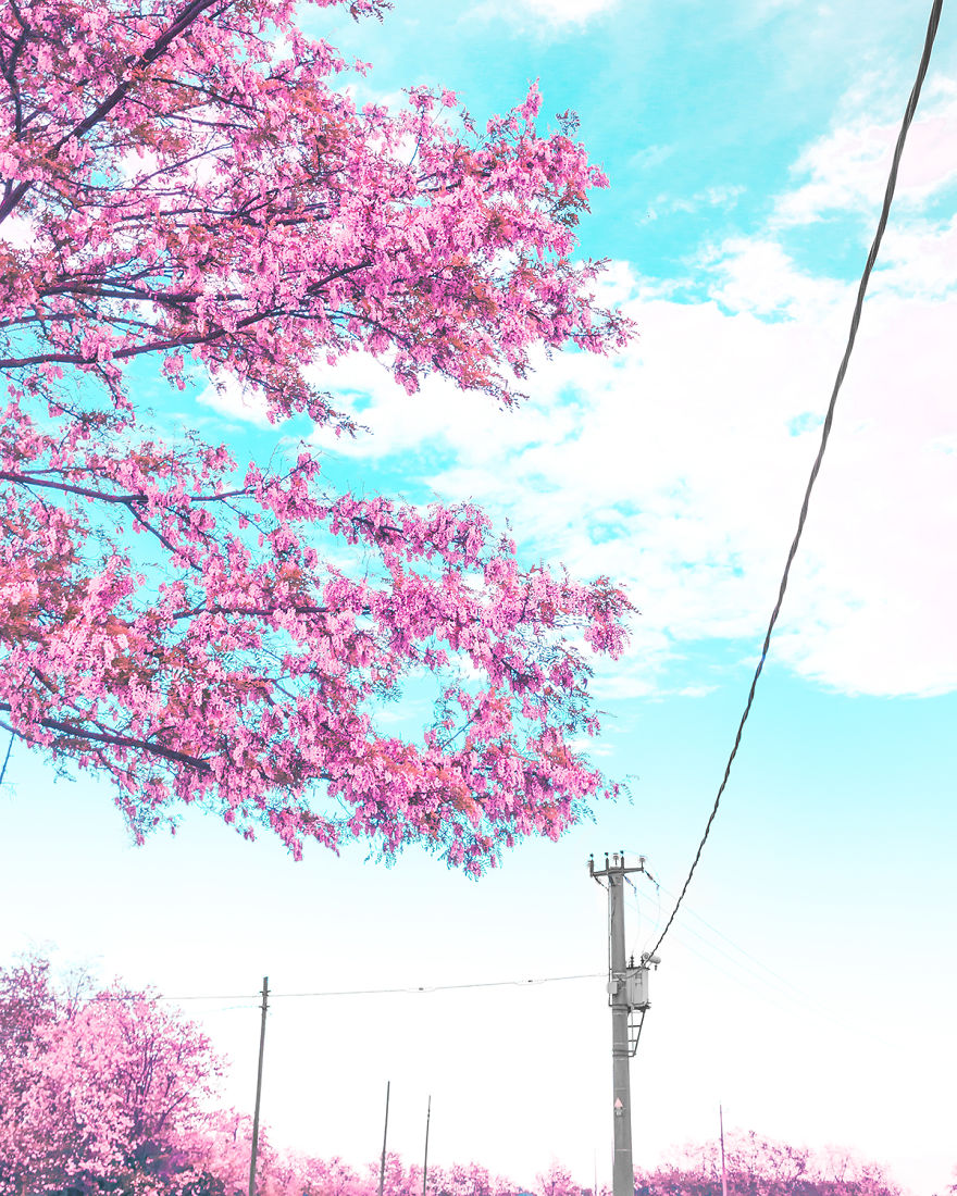 I Take Pictures Inspired By Japanese Anime