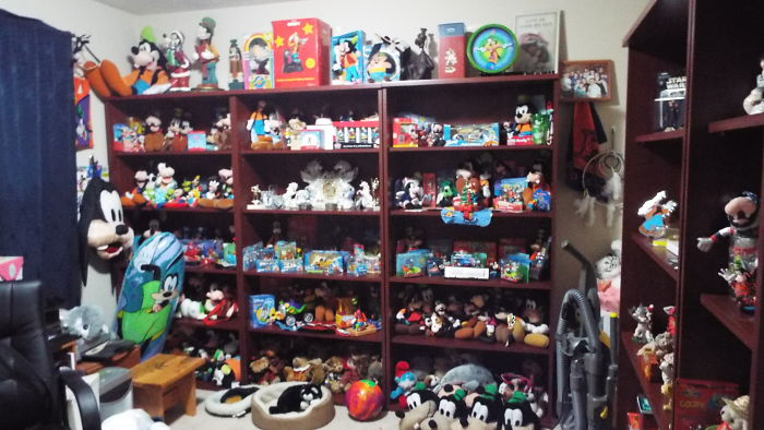 I Collect Goofy About 2000 Items
