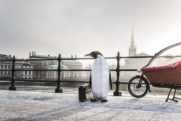 Paper Penguins Pop Up Around World To Share Urgent Message About Their Home