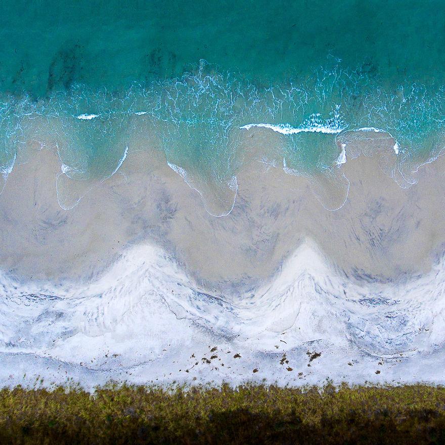 Bruny Island Scallops