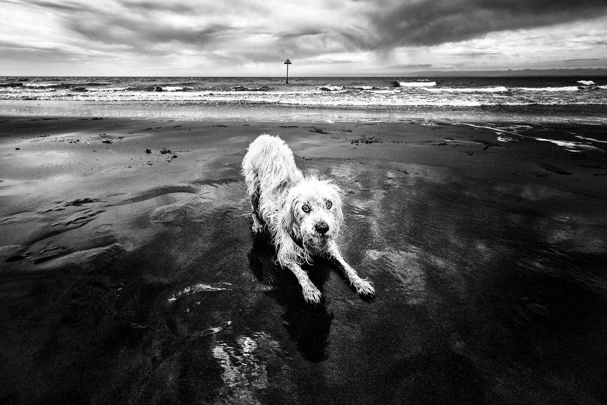 West Wittering Beach, West Sussex, UK