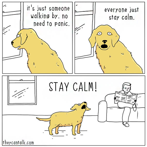 Cats-Dogs-Comics-They-Can-Talk-Jimmy-Craig