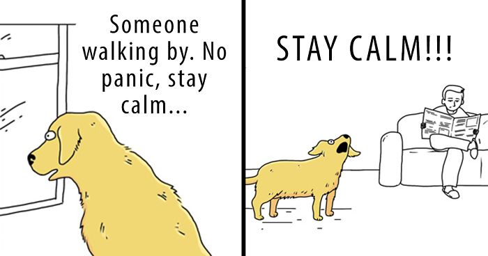31 Differences Between Cats And Dogs That Are Impossible Not