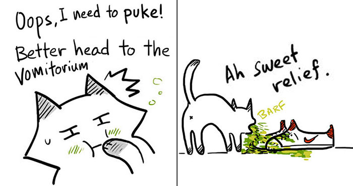 16 Hilarious Comics That Reveal The Reality Of Having A Cat