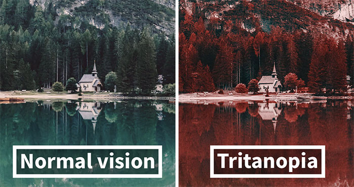 Here's How Colorblind People With Tritanopia See The World