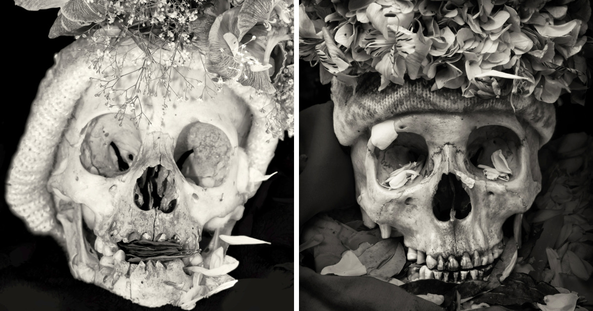 Human Skulls Portrayed In The General Cemetery Of The City Of La Paz, Bolivia