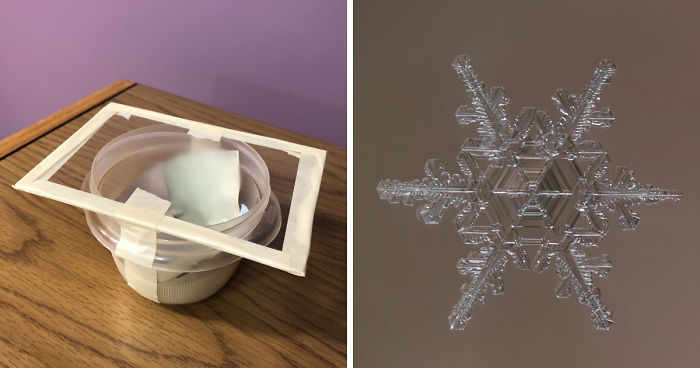 How To Photograph Macro Snowflakes At Home