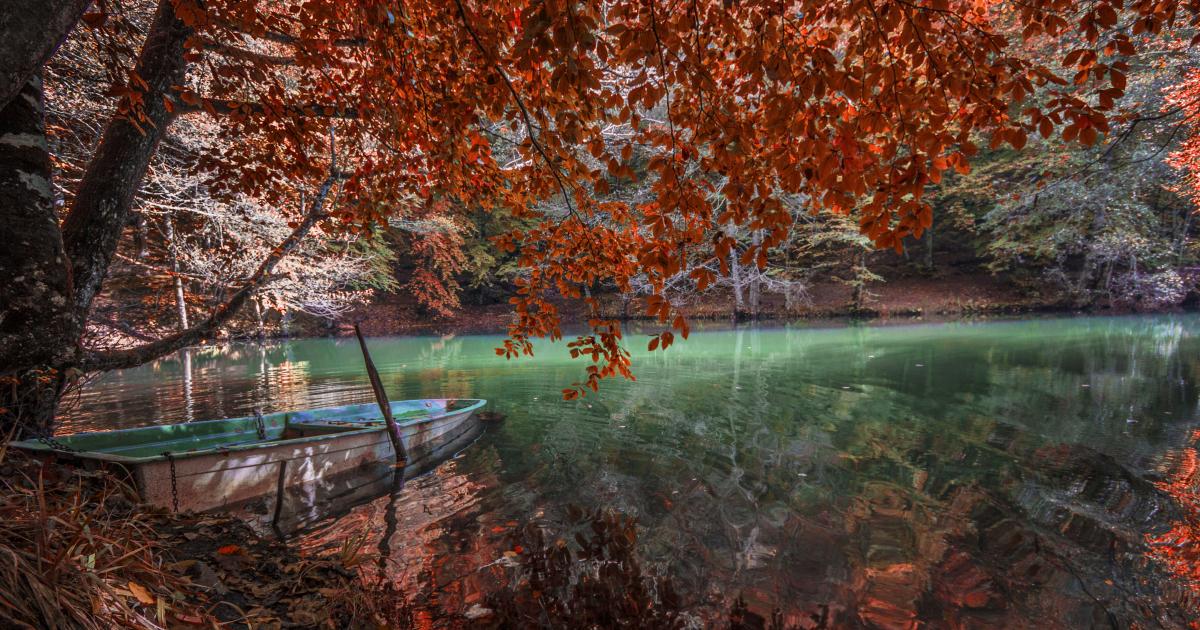 Autumn Tones From Turkey