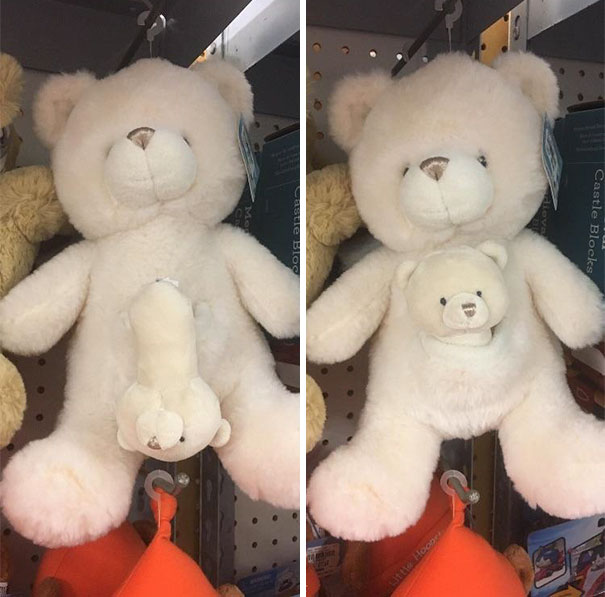 His Baby Bear Doesn't Have A Body