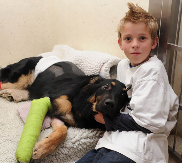 An 8 Month Old Puppy Geo Saved Charlie Riley From Being Hit By A Truck By Pushing The Boy Out Of The Way And Getting Hit And Run Over Instead
