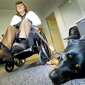 Faith llamó a emergencias cuando su dueña tuvo un ataque y se cayó de la silla de ruedas. Está entrenada para pedir ayuda marcando un botón en el teléfono con la nariz