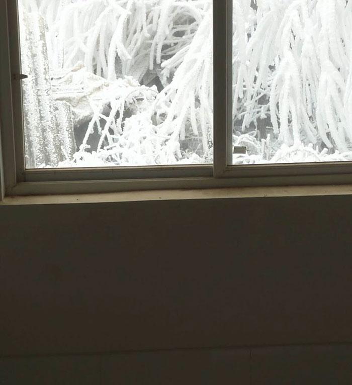 ice-boy-walk-freezing-cold-school-wang-fuman-china-17