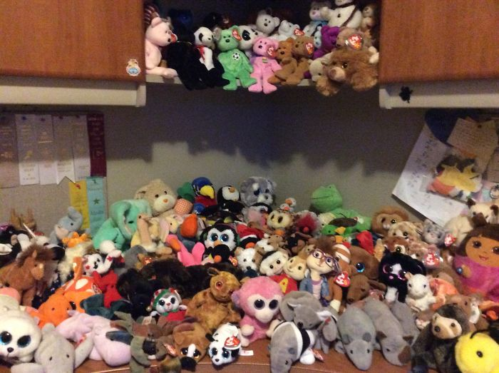 My Ty Collection— 202 Stuffed Animals And Counting