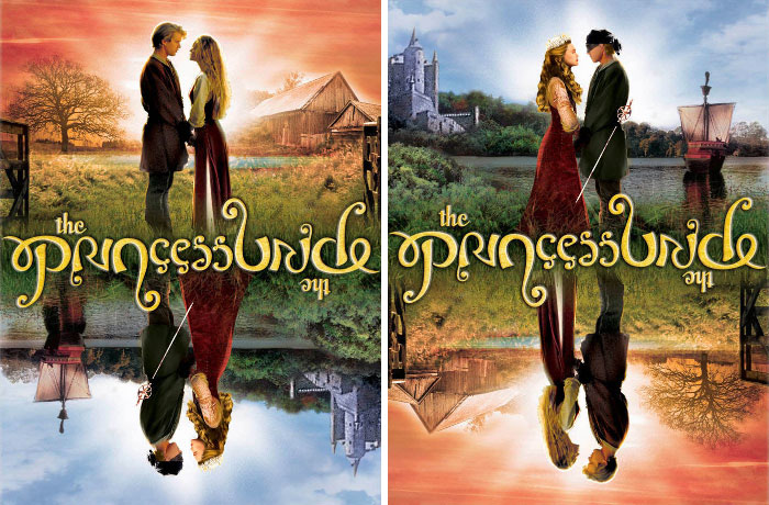The Cover Of The Princess Bride 20th Anniversary Edition Dvd Can Be Read Upside Down As Well As Right Side Up