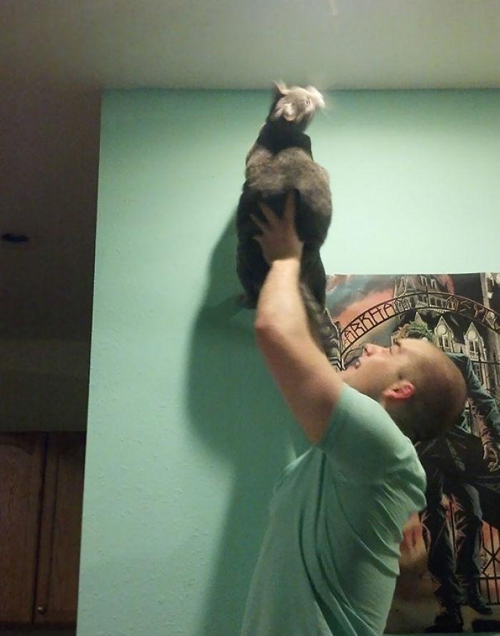 Mi novio y su gato cazando bichos
