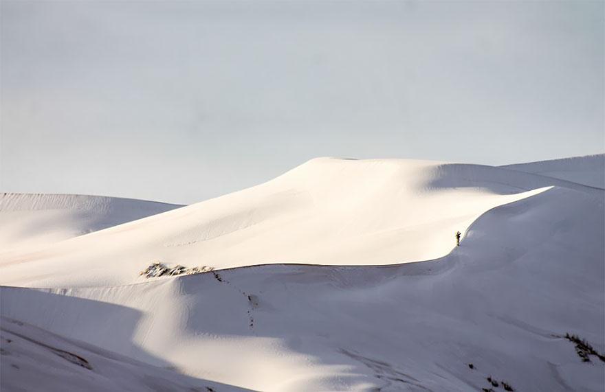 rare-snow-sahara-desert-third-time-karim-bouchetata-19