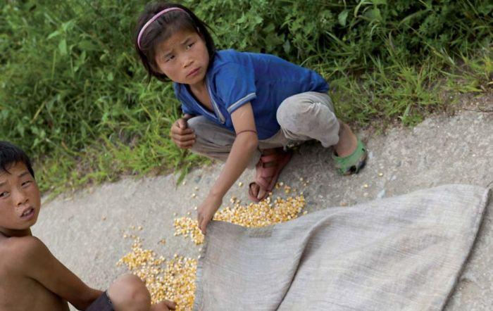 Kids In Begaebong Streets, Collecting Grains