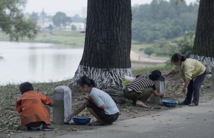 Cada año, la gente de la ciudad va al campo a ayudar en proyectos públicos. Están pintando hitos. Creen que la foto se puede interpretar como trabajos forzados