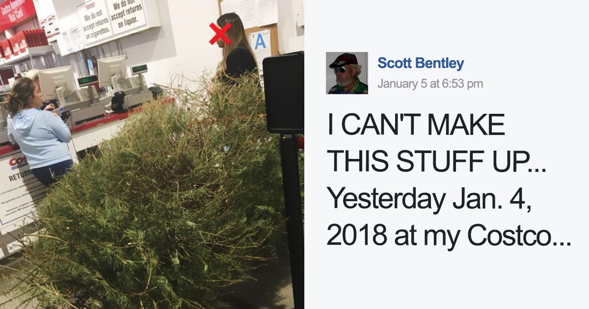 woman returns a christmas tree on january 4th because its dead and the shops response will infuriate you bored panda