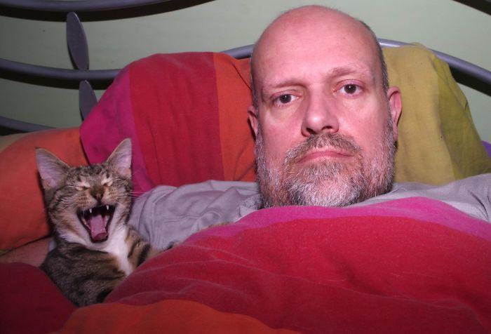 Kitten Farting Under The Duvet