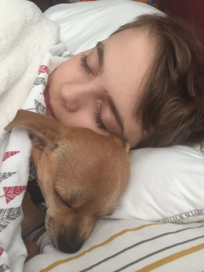 """Home From School With The Flu: 🤒 Asked My Son Why The Top Of Our Teacup Chihuahua's Head Was Wet When They Woke Up From Nap Time. He Said, """"I Licked Him. I Wanted To Say 'I Love You' In His Language So He Would Really Know."""" 🤦♀️♥️"""
