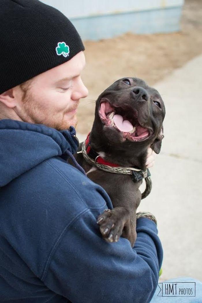 El perro más feliz del refugio