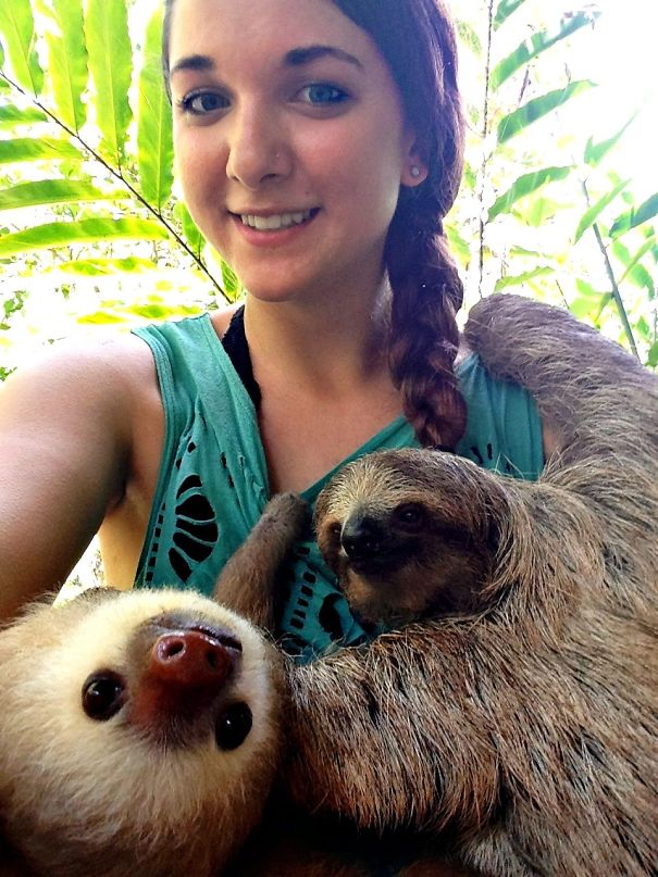 I Fulfilled One Of My Life Dreams This Summer. I Got To Volunteer With Sloths!