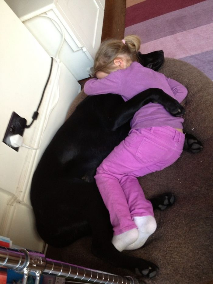 When She Comes Home From A Long Day At School, Having A Bad Day, Been Told Off Or Sad... She Cuddles Her Best Friend