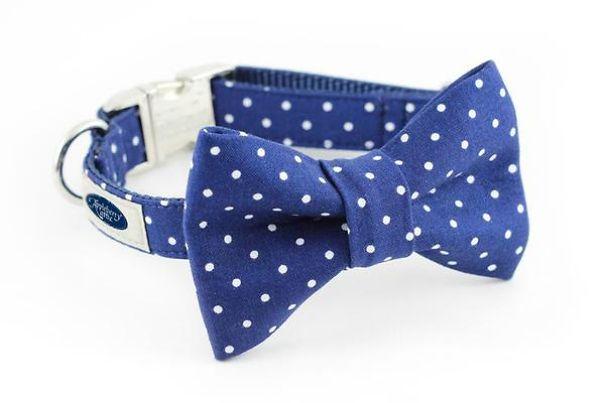 Dog_Collar_Bow_Tie_-_Blue_Dots_d36a016d-d6e7-4663-87a9-3c9f63f6c464_grande-5a7d7dece84c8.jpg