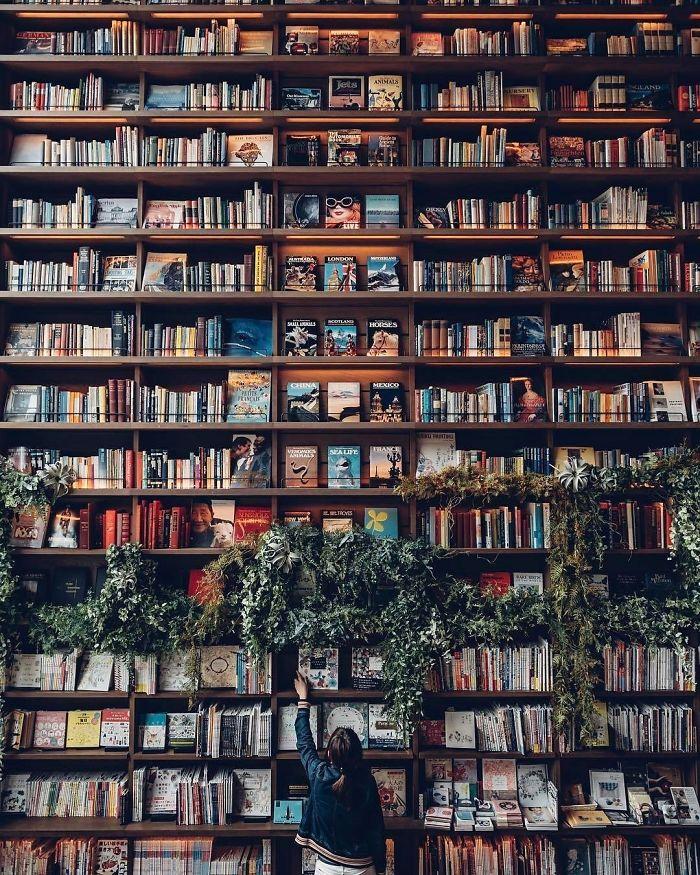 A Bookshelf Like A Wall
