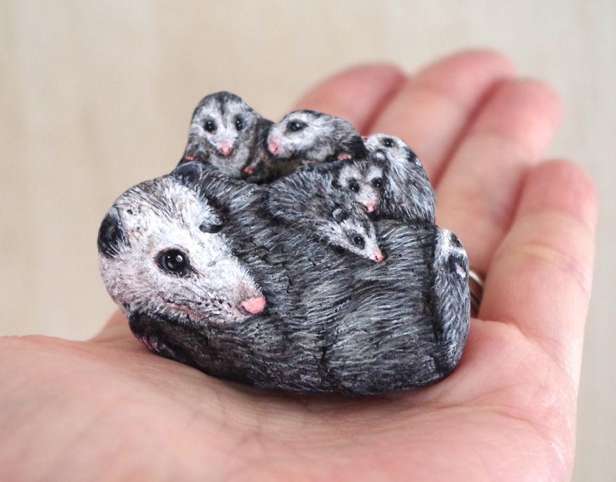 Possum Family