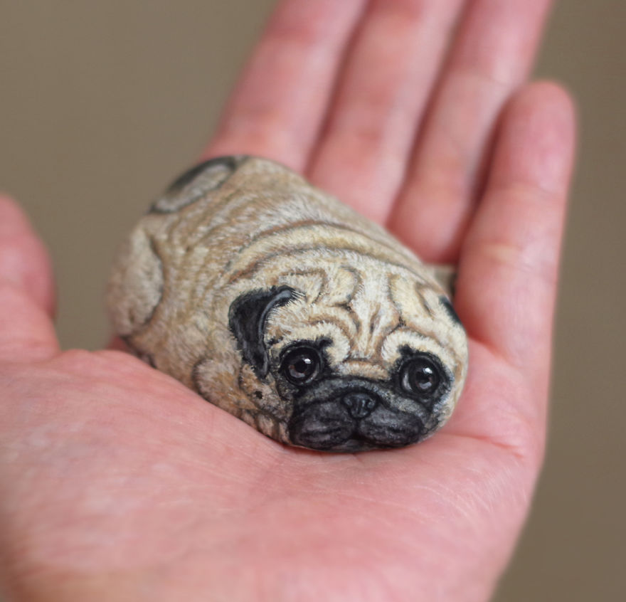 Pug As A Pet Inside Dog