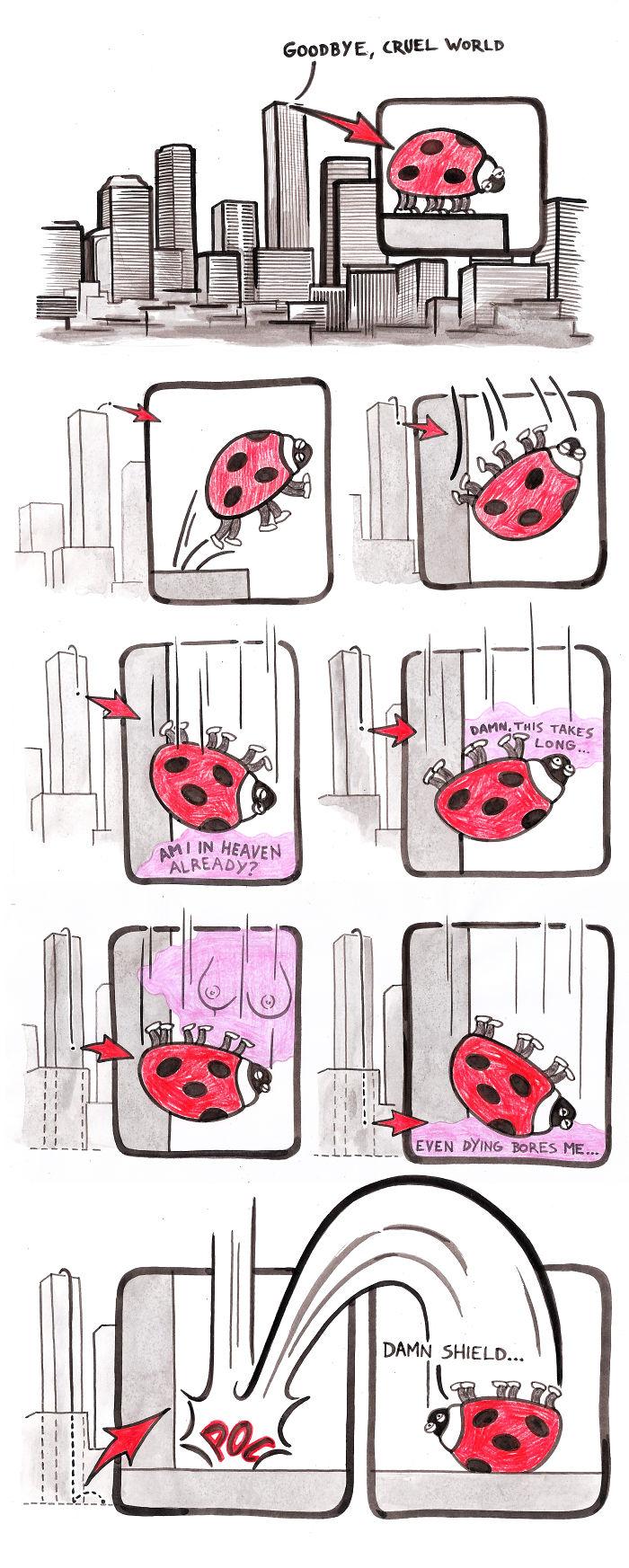 Suicidal Ladybird