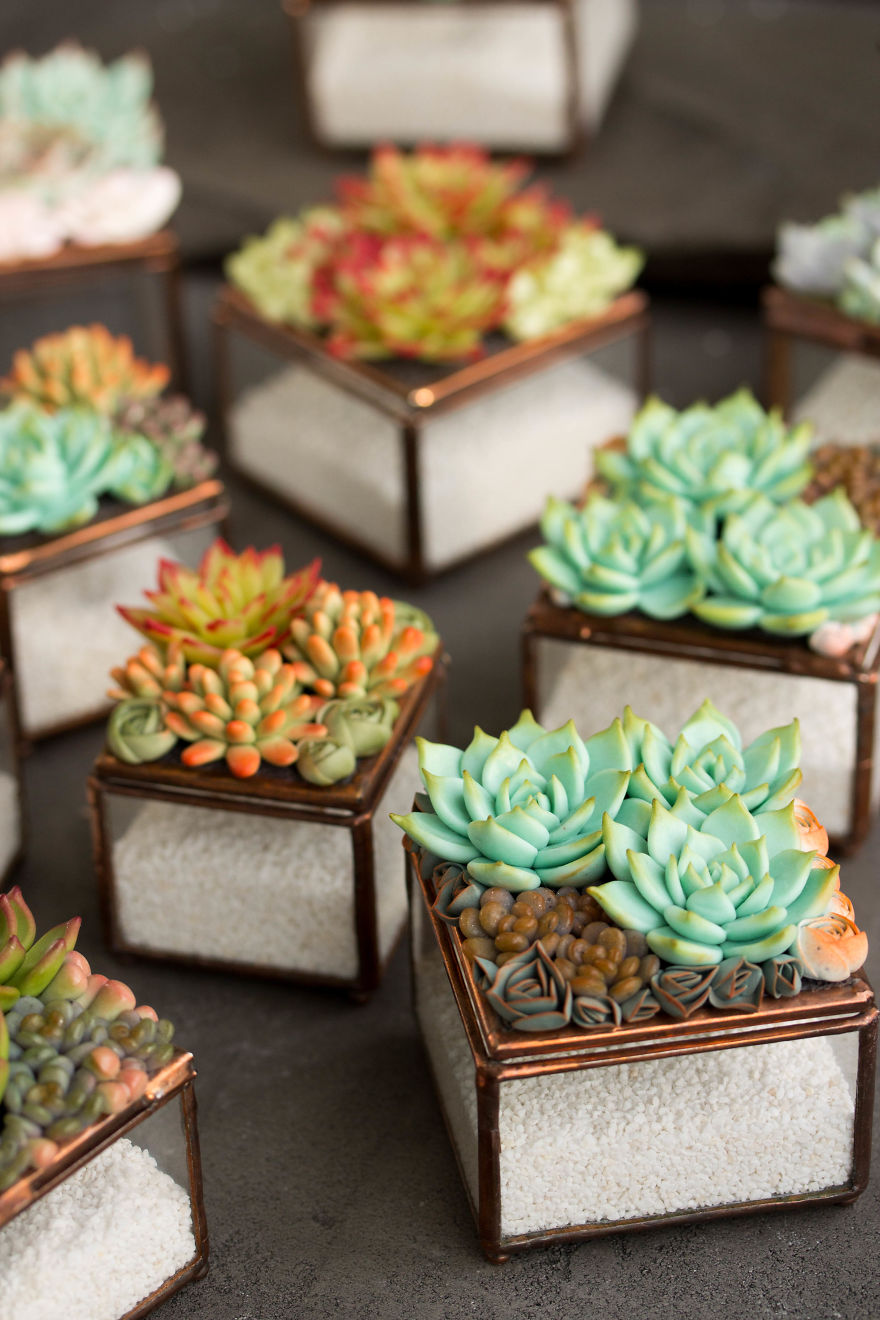 Polymer Clay And My Succulent Mania