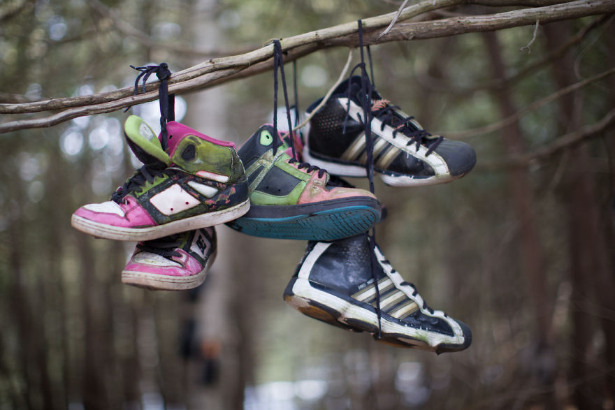 I Accidentally Found A Mysterious Forest Full Of Shoes