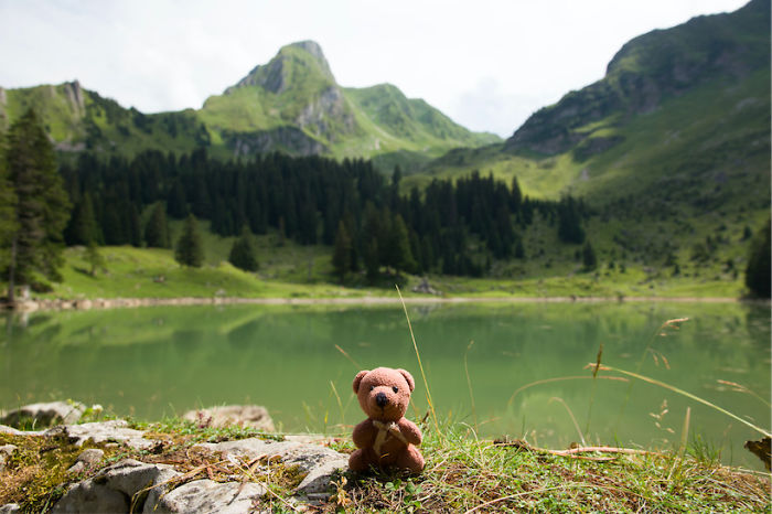This Little Teddybear Travels Around The World And Sees The Most Beautiful Places