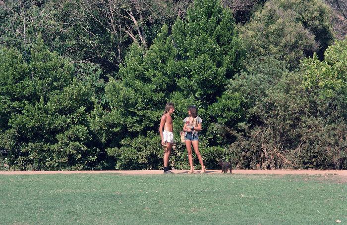 Rod Stewart, 1976