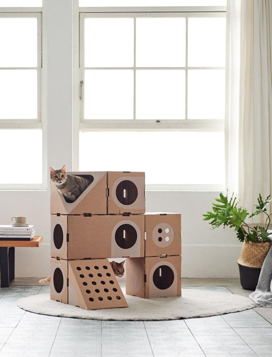 Cabane En Carton Diy architect couple turns cardboard boxes into stackable cat